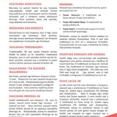 Link to ESA Basics Somali fact sheet