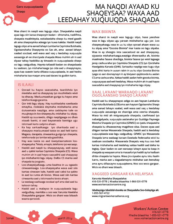 Working for Cash - Somali factsheet 2019