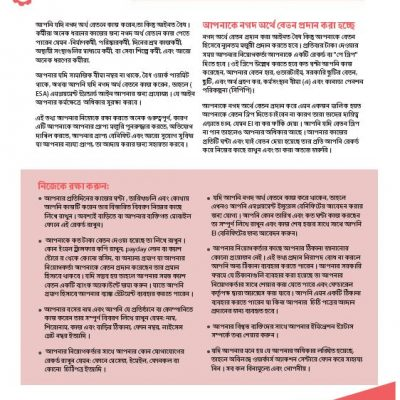 Working for Cash factsheet in Bengali